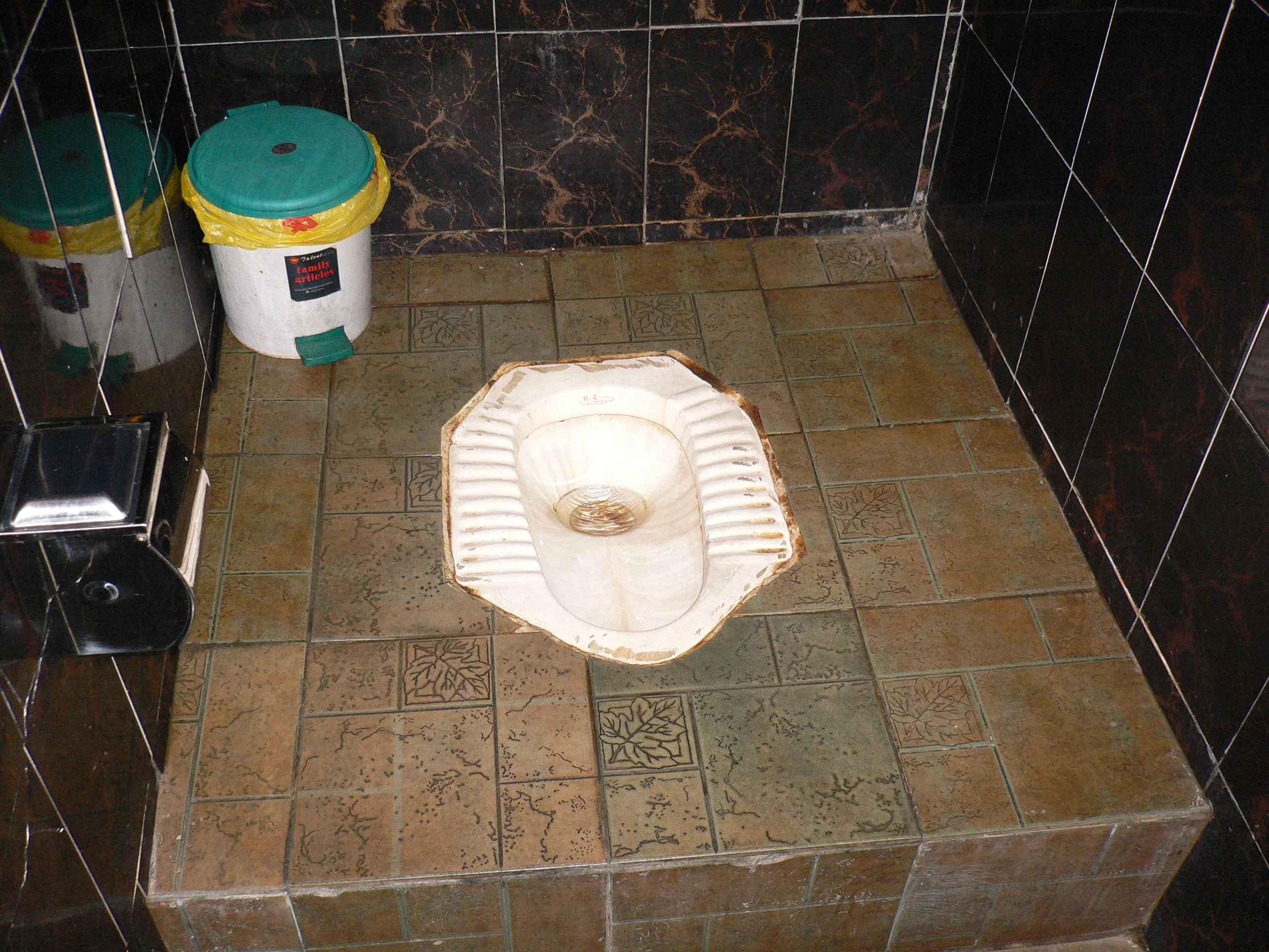 Drop Toilet