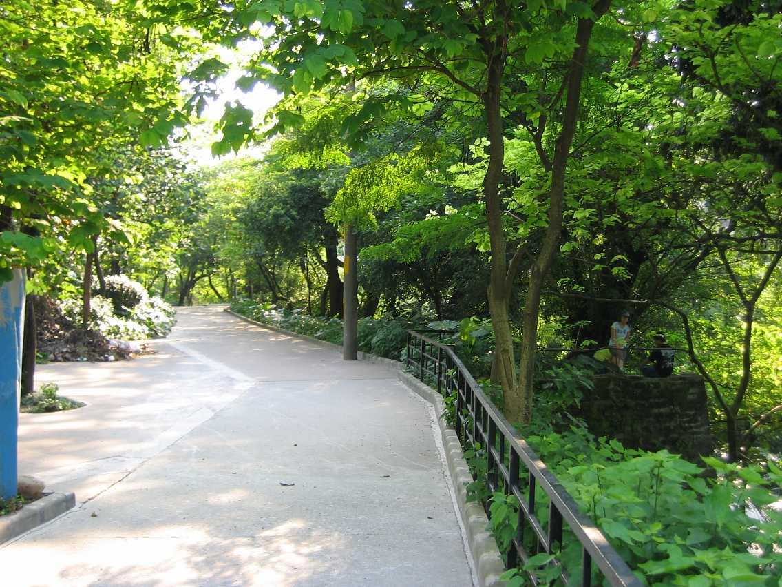 Guangzhou park scenery.jpg
