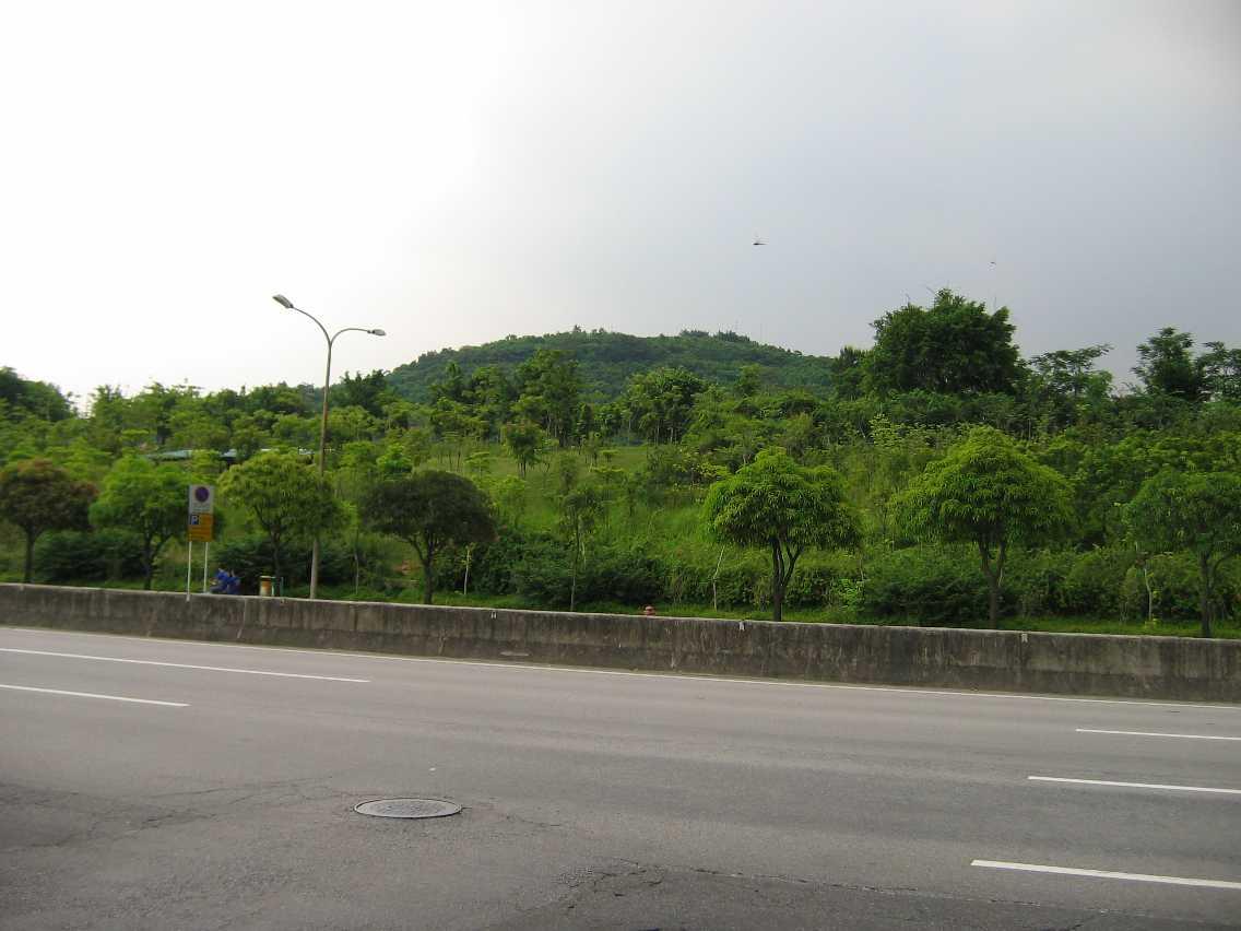 Lianhuashan Park ground view.jpg